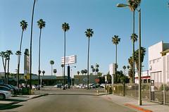 / (plattnerbauten) Tags: california street city blue sky sun shop store losangeles palmtree sunsetboulevard 99c