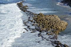 Limestone shoals, Atlantic Ocean, San Juan, Puerto Rico (Chuck Sutherland) Tags: ocean water waves puertorico sanjuan limestone pr atlanticocean shoals carbonate limestonecliffs