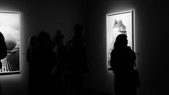 Attityd/Attitude (annesjoberg) Tags: art backlight blackwhite konst attitude sihlouette svartvitt motljus siluett attityd fotografiska fotosondag fs160320