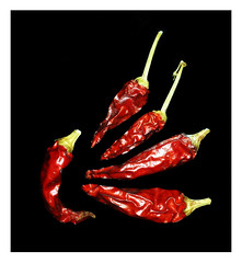 red hot chilli peppers (ikkio_too) Tags: red hot picasa olympus zuiko chillies 1240mm omdem1