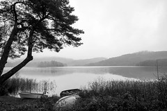 Loch Ard Morning (AJL0610) Tags: scotland unitedkingdom kinlochard
