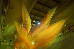 Janet Echelman at the Renwick 2016 (11 of 12) (-Chilly-) Tags: color gallery janet breathtaking renwick washdc luminosity echelman