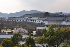 Himeji Castle, Himeji City, Hyogo Prefecture (kyoshiok) Tags: nationaltreasure himejicastle hyogoprefecture worldculturalheritagesite himejicity whiteegretcastle