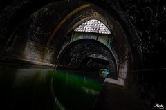 Reflex'ion Green Water (leKorbo.be) Tags: test paris pen olympus f 28 714mm