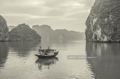 Early morning traffic (Barbara Oggero) Tags: morning sea nature water landscape bay boat traffic vietnam halong indochina