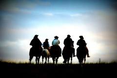 Pechando o frio (Eduardo Amorim) Tags: brazil horses horse southamerica brasil criollo caballo cheval caballos cavalos pelotas pferde cavalli cavallo cavalo gauchos pferd riograndedosul pampa hest hevonen campanha brsil chevaux gaucho  amricadosul fronteira hst gacho  amriquedusud  gachos  sudamrica suramrica amricadelsur  sdamerika crioulo caballoscriollos criollos   americadelsud  crioulos cavalocrioulo americameridionale caballocriollo eduardoamorim cavaloscrioulos