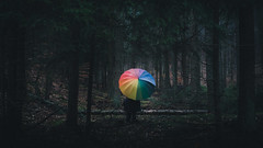 Rainforest (sfp - sebastian fischer photography) Tags: rain forest umbrella raindrops raining landschaft regen regenschirm rainbowcolors humanelement minoltamdrokkor45mmf2 baddrkheim pflzerwald neustadtanderweinstrae