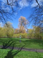 Centered (Anna's 50) Tags: nature spring copenhagen park buds greenery center canong1x powershotg1x g1x canonpowershot canon compact
