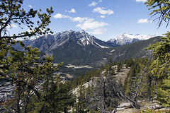 Banff, Tunnel Mountain Hike, April 9 2016 (49)_e_apr_11_16 (Velates) Tags: canada mountains alberta rockymountains banffnationalpark