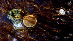 En Terre inconnue (clairetresse) Tags: france macro water grass stone ball stream cristal nord isre
