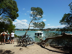 Rabbit Island ferry (ednabucket) Tags: newzealand ferry boat rabbitisland