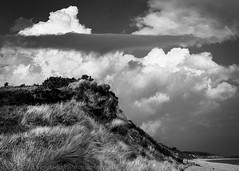 Minsmere Cliffs (Stuart Feurtado) Tags: sky blackandwhite cliff cloud beach monochrome suffolk dramatic nik eastanglia minsmere dunwichheath silverefex minsmerecliffs