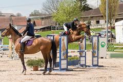 DSC09041_s (AndiP66) Tags: springen hildisrieden reitsportcenter estermann traselinge 2016 september pferd horse schweiz switzerland kantonluzern cantonlucerne concours wettbewerb horsejumping equestrian sports springreiten pferdespringen pferdesport sport sony sonyalpha 77markii 77ii 77m2 a77ii alpha ilca77m2 slta77ii sony70400mm f456 sony70400mmf456gssmii sal70400g2 andreaspeters luzern ch