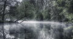 day begins at a little river (Florian Grundstein) Tags: morning misty fog river bayern early wasser nebel olympus fluss morgen spiegelung heimat omd oberpfalz dunst naab naabtal