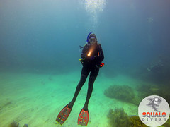 Scuba Dive in Key Largo-April 2016-42 (Squalo Divers) Tags: usa divers key florida scuba diving padi ssi largo squalo