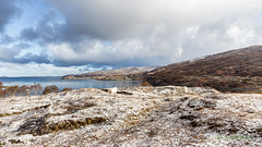 And I heard the Cuckoo today (AnnieMacD) Tags: snow scotland sheep april lambs westerross applecross innersound culduie