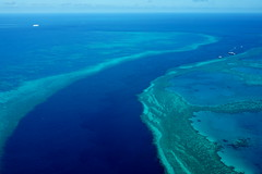 Great Barrier Reef (cande reymundo) Tags: ocean travel blue nature coral australia reef greatbarrierreef viewfromabove