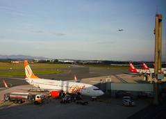 The Airport (Antnio A. Huergo de Carvalho) Tags: world city cidade brazil brasil airplane airport aircraft aviation aeroporto curitiba airbus boeing avio mundo tam gol 737 aviao a320 comercial b737 737800 boeing737800 airbusa320 b737800 aeroportoafonsopena sbct aviaocomercial