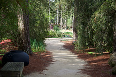 Garden Path (Herculeus.) Tags: trees bench landscape outside outdoors mar nc trellis walkway tulip paths photostream fayetteville flowersplants 2016 diciduous capefearbotanicalgarden