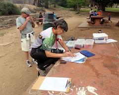 015 Clare Adds Up The Score (saschmitz_earthlink_net) Tags: california losangeles orienteering echopark elysianpark 2016 losangelescounty laoc losangelesorienteeringclub