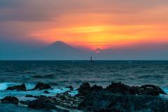 Evening Fuji view from Arasaki (shinichiro*) Tags: japan evening spring fuji may sunsets jp  kanagawa crazyshin   miura 2016    arasaki afsnikkor2470mmf28ged   nikond4s 20160501ds30967