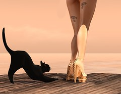 SUNSET (V1CT0RIA) Tags: new wood city sunset summer woman sexy classic clothing model shoes pumps mesh body avatar platform sl adventure creation secondlife casual heel marketplace stiletto hud punky belleza creations maitreya slink mirus releace