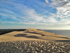 the brotherhood of desert, wood and sea (volker ißbrücker) Tags: clouds landscape dunes ngc soe bej theworldisbeautiful artofimages bestcapturesaoi elitegalleryaoi