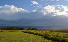 Seelim's Creek storm (dustaway) Tags: light shadow storm water landscape weeds australia nsw thunderstorm australianlandscape wetland waterscape waterhyacinth arcus rollcloud northernrivers coraki richmondvalley richmondriverfloodplains seelimcreek seelemscreek australiancreeks seelimscreek
