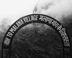 The Cream Of The Crop (Sahir Dhinojwala) Tags: india mountains monochrome mono blackwhite himalayas charas himachalpradesh malana parvativalley iphoneography malanacream