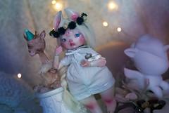 {Crystal Harvest} (Koala Krash) Tags: cute rabbit ball oso doll crystals crystal stones makeup koala bjd polar dust custom chubby unicorn custo agatha krash spun jointed balljointeddoll osopolar faceup qwartz zouh dustofdolls