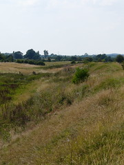 Channel Gate (mdavidford) Tags: wild grass gate bank prehistoric dorchester defences ironage earthworks oppidum dykehills dorchesterdykes dorchesterfort