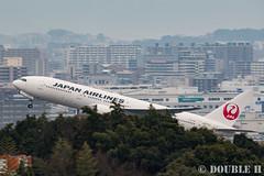 Fukuoka Airport 2016.1.17 (29) JA773J / JAL's B777-200 (double-h) Tags: airplane jal   fuk b777  fukuokaairport  rjff b777200 ja773j eos7dmarkii ef100400mmf4556lisiiusm accinfukuoka