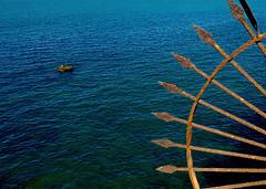 The Ocean (Anavicor) Tags: ocean blue sea espaa mar spain outdoor navy panasonic cdiz atlntico ocano anavillar anavicor