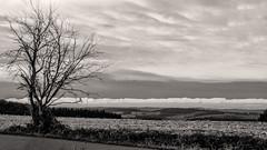 Wolkenwand / bank of fog (ludwigrudolf232) Tags: