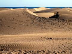 Awyr, mr, tywod / Cielo, mar, arena (Rhisiart Hincks) Tags: grancanaria landscape coast seaside traces footprints paisaje cte sanddunes sandhills maspalomas pegada empreintes arfordir aod tirlun ayakizi glanymr voetafdruk urma ltraed fotspr kostalde fusabdruck twynitywod gainmheach tevennotraezh hondarmuino hondarmuinoak louchtreid luodda nyawo maezio dnangainmhich oinatzaztarnak huella  lorgcoise ltroed odtisstopala ladjalanjlki