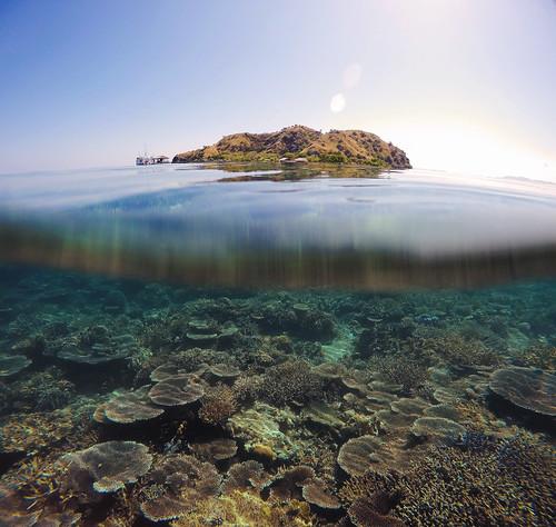 GOPRO - Underwater capture of KANAWA Island