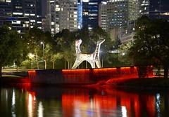 Melbourne (quarterdeck888) Tags: nightphotography water reflections nikon flickr cities frosty cbd freight yarrariver quarterdeck melbournecity truckphotos d71 expressfreight roadfreight jerilderietruckphotos jerilderietrucks australiantruckphotos