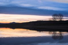 Sunset reflections (~pierpalol) Tags: travel blue trees sunset sky italy orange lake reflection tree water clouds reflections landscape lago italia blu calabria sila sunsetporn cecita 500px landscapeporn ifttt