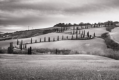 San Silvestro (Cartocci) Tags: winter italy hills tuscany toscana inverno cypresses capodanno colline cipressi