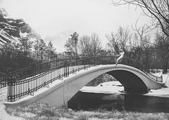Cuando cae el invierno (PetterZenrod) Tags: bridge winter blackandwhite bw woman snow art puente nieve invierno