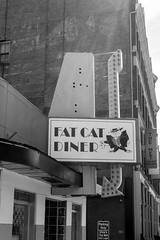 Fat Cat (Eridony) Tags: ohio sign restaurant downtown lima diner allencounty