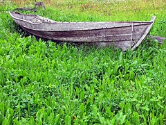 Gammel traver -|- Old rowboat (erlingsi) Tags: green abandoned norway composition norge decay gras gress derelict stryn lvetann grnt