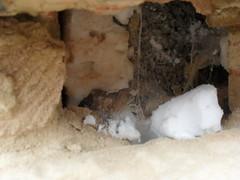 Poor insulation