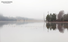 Loch Pityoulish (chuckrock123) Tags: uk lake reflection tree water fog forest canon scotland hill highland 5d loch speyside 24105 pityoulish