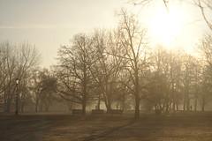Easter Sunday morning in Prague (janjaromirhorak) Tags: park morning mist nature fog sunrise prague outdoor praha eos350d