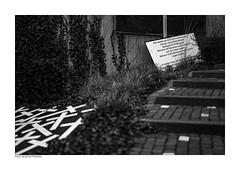 Besuch an der Rampe... (photographic playground) Tags: art canon eos 50mm rip 14 sigma tunnel juli duisburg tod ruhrgebiet loveparade 2010 6d gedenken panik trauer rampe tragödie restlicht lp2010 24juli2010
