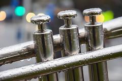 Trumpet in the rain (Maria Eklind) Tags: music rain closeup se sweden bokeh outdoor trumpet instrument sverige musik malmö skånelän mellanheden fotosondag fs160306