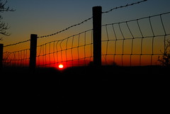 336/365 Through the fence (images@twiston) Tags: sunset sky orange silhouette fence landscape post silhouettes lancashire valley barbedwire 365 cloudless silhouetted fencepost aonb ribble forestofbowland throughthefence waddingtonfell sheepfence sheepwire todber