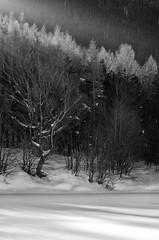 Raggio di sole (Zanna33) Tags: macro lago neve daniela ritratto appennino ghiaccio calamone ventasso
