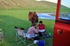 Chess in Mongolia (charlottehbest) Tags: travel horse travelling beautiful scenery driving offroad exploring chess roadtrip adventure mongolia local mongolian 2015 offthebeatentrack charlottehbest theadventuresofhenryjruffington